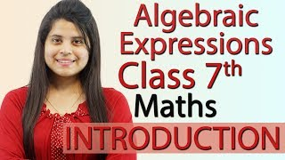 """""""Algebraic Expressions"""" Chapter 12 - Introduction - NCERT Class 7th Maths Solutions"""