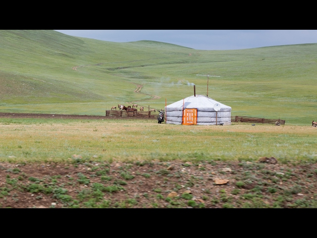 Mongolia: Nomadic and Urban Cultures