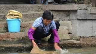 preview picture of video '2012 China Tour Part 2 - Zhujiajiao ( Water Village) China'