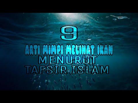 9 arti mimpi melihat ikan menurut tafsir islam