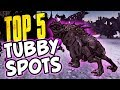 TOP 5 TUBBY SPAWNING LOCATIONS Borderlands 2