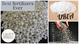 Top 3 Chemical Fertilizer for Vegetable Gardening