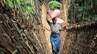 preview picture of video 'Overlanding West Africa: Trek To A Vine Bridge In Guinea'