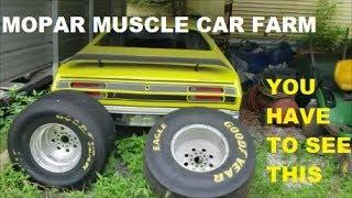 Unbelievable... Mopar classic & muscle car farm.