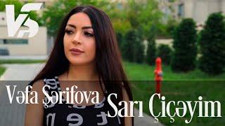 Download Vefa Serifova Sari Ciceyim Official Video In Hd Mp4 3gp Codedfilm