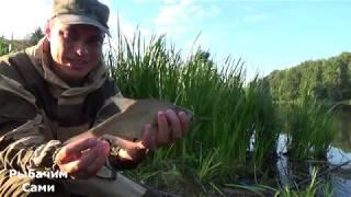 Река пехорка балашиха рыбалка