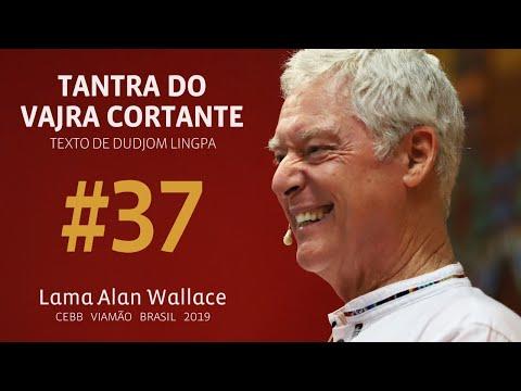 Tantra do Vajra Cortante #37   Retiro com Alan Wallace   2019