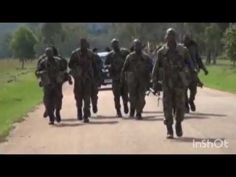 Combat Readiness: 3Division Nigerian Army Organizes Competition