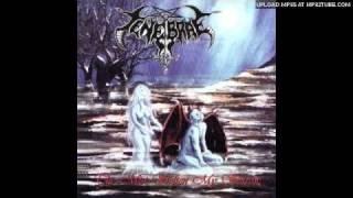 Tenebrae - Epitaph of the fallen