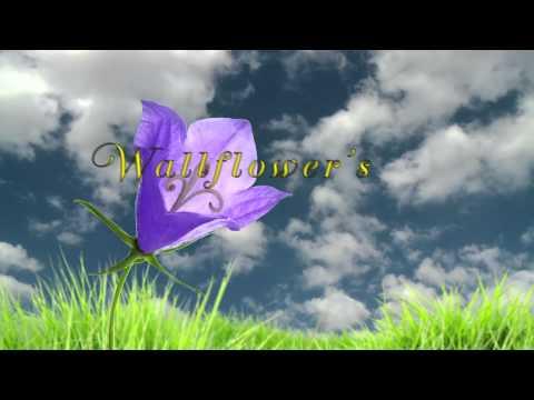 """Andrew Bobulinski- """"Wallflower"""" (OFFICIAL LYRIC VIDEO)"""