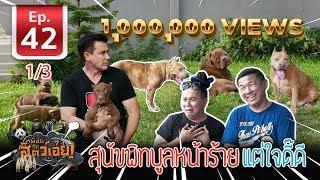 สุนัขพิทบูล หน้าร้าย ใจดี (Pitbull)- เพื่อนรักสัตว์เอ๊ย EP.42 (1/3)