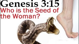 GENESIS 3:15 - WHO IS THE SEED OF THE WOMAN?