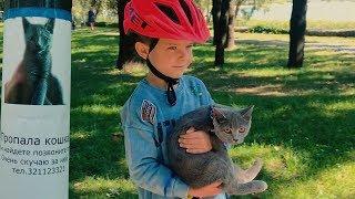 Den found little kitten in the park. Video for children
