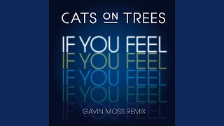 If You Feel (Gavin Moss Remix)