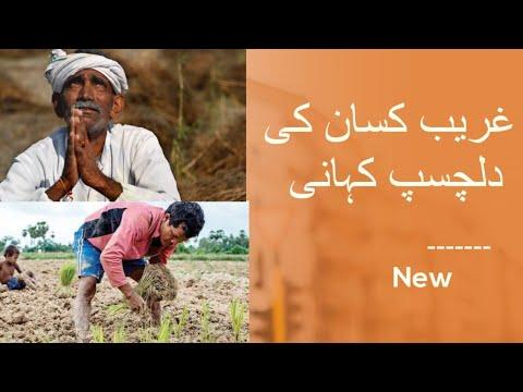 The Untold Story Of Farmer    New    Farmer Story in Urdu ,Kassan,Field,Farmer song,farmer Remix