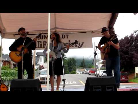 """The Dead Strings Performing """"Company Man"""""""
