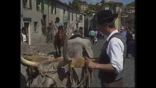 preview picture of video 'Le cose ritrovate - Il museo della Terra e del Territorio di Latera, Viterbo'