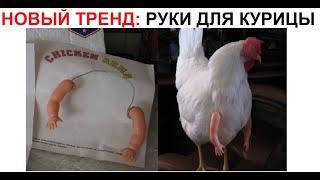 Лютые приколы. Новый тренд - руки для курицы