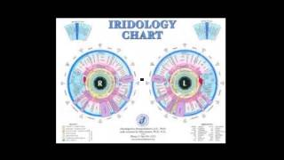 Iridology-How the Iris is read