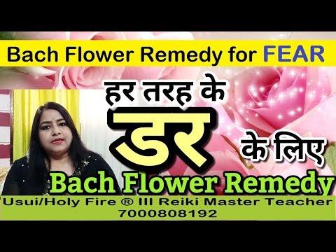 BACH FLOWER Remedy for FEAR | Learn Reiki, Bach Flower, ZIBU ...