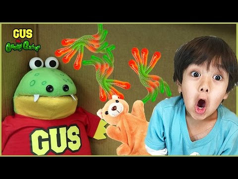 I MAILED MYSELF TO RYAN TOYS REVIEW and it worked! Gus goes to Ryan's House with Surprise Toys