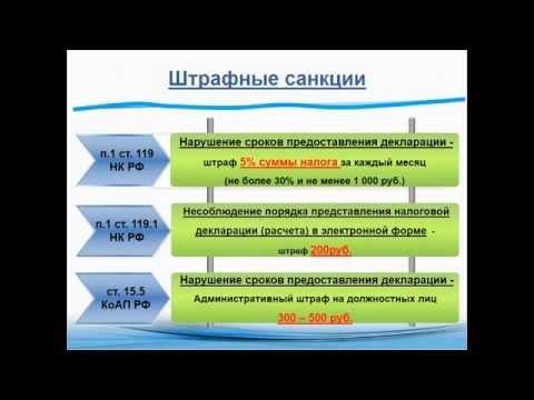 Особенности заполнения декларации по налогу на прибыль mp4 1