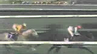 奇跡の復活トウカイテイオー1993第38回有馬記念