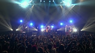 "Halo at 四畳半 ""モールス"" (Official Live Video)"