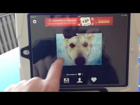 Video of Демотиваторы от Забавы PRO