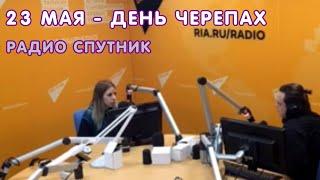 """Всемирный день черепах - 23 мая на радио """"Спутник"""""""