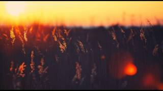 [PT] Showave - Eternal (Original Mix) [High Quality Mp3]