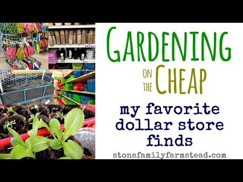 My Favorite Dollar Store Gardening Finds