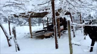 Video del alojamiento Mas Aixola