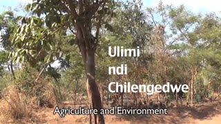preview picture of video 'PV: Agriculture and Environment - Ulimi ndi Chilengedwe'