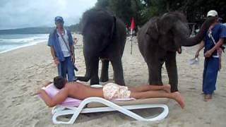 Смотреть онлайн Слон умеет делать массаж
