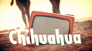 DJ BoBo - CHIHUAHUA ( Official Music Video France )