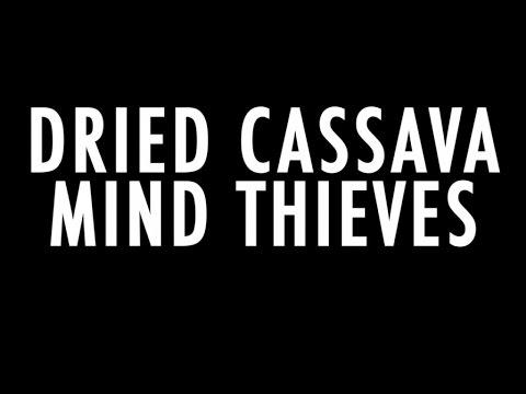 Dried Cassava - Paradox (Official Lyric Video)