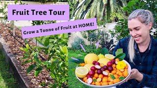 Growing FRUIT TREES In Your Backyard // Urban Permaculture Edible Garden Tour  // Australia 2020