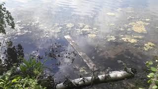 Рыбалка на озере кета красноярский край