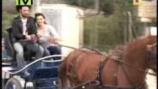 preview picture of video 'La Amazona de inca Mallorca'