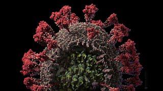 Modelo mais preciso até hoje do coronavírus em 3D é criado