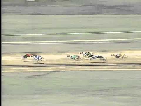 Race 21