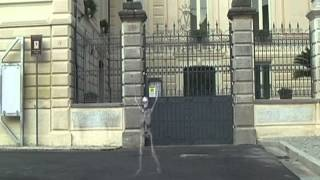 preview picture of video 'Palazzo Maturi - gervaweb'