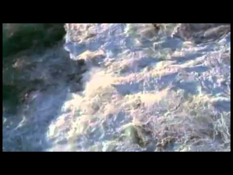 Pag-aalis ng mga worm katutubong lunas para sa mga bata