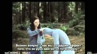 Затмение, Специальное приложение к DVD «Затмения»: Белла и Волк (русские субтиры)