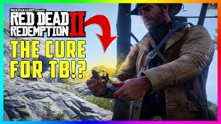 This SECRET Mission Gets Arthur A Cure For Tuberculosis & The BEST Item In Red Dead Redemption 2!
