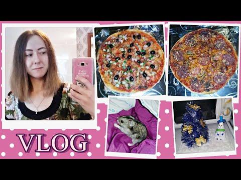 Vlog:В доме холодно,хомка тоже замерз)Заказали пиццу.