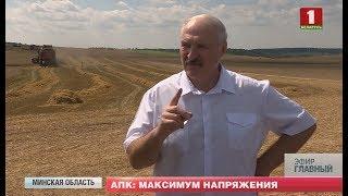 Президент Беларуси посетил Минский и Миорский районы. Главный эфир