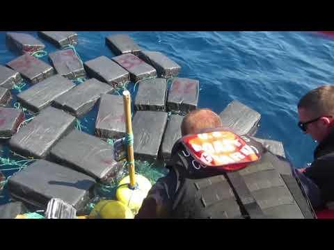 Морская черепаха перевозила тонну кокаина