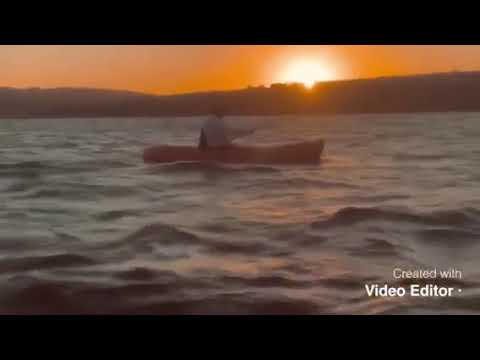 Video Of Havasu Landing Resort Campground, CA